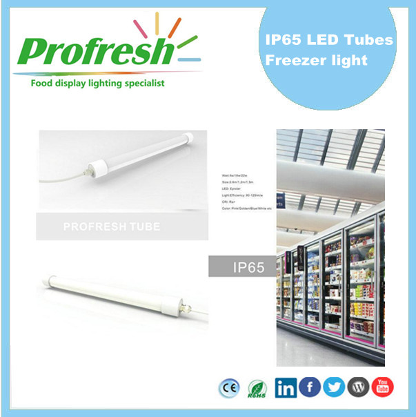 waterproof IP65 22Watts 5FT refrigeration equipment T8 Tubes