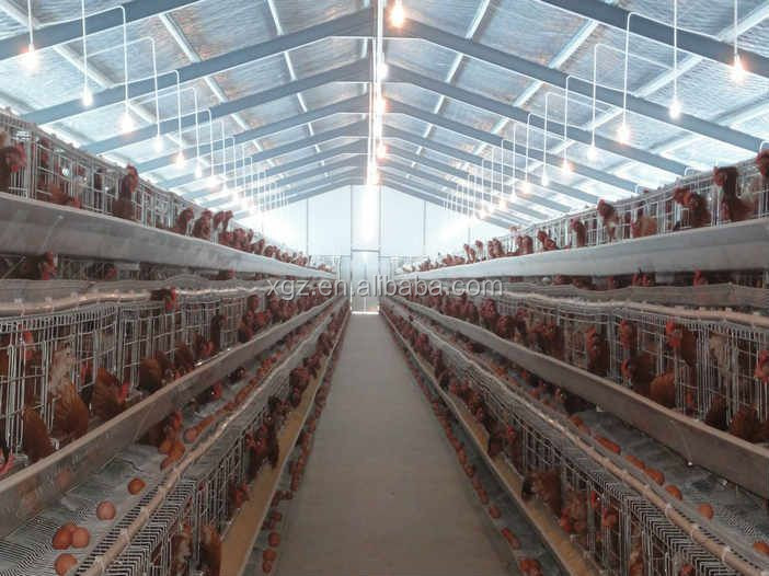 Chicken House Farm made poultry | ollantay center for the arts
