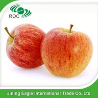 High quality fresh sweet fuji apple fruit for sale