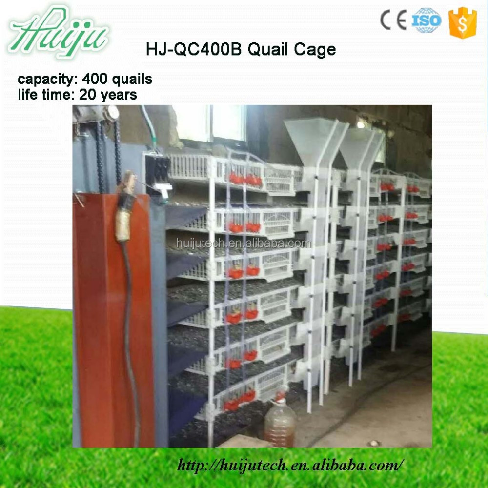 Eco-Friendly plastic & metal material wire mesh quail cage for sale HJ-QC400B