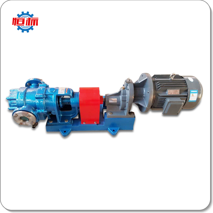 Hengbiao applications wide range industry demand stainless steel cast iron NYP series high viscosity rotor pump