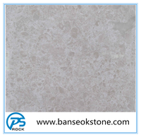 beige delicato cream marble for hotel decoration