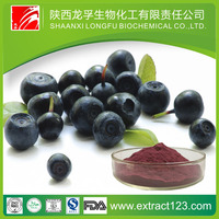 Factory Supply Acai Berry Juice Powder with Benefit
