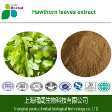 Pure Natural Hawthorn fruit Extract hawthorn berry extract Hawthorn leaf extract