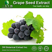 Cosmetic Grade Grape Seed Plant Extract Powder Grape Seed P.E Powder Natural Grape Seed Extract