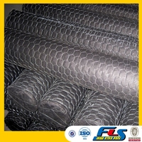 Stucco Small Hole Chicken Wire Mesh(Factory Price)