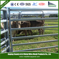 Zinc 60g/200g hot dippped galvanized beef cattle in australia