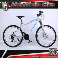 handsome bike 2016 One whole wheel MTB for men