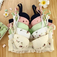 Lastest design lovely teenage girl bra and panty set Lace flower Gather underwear