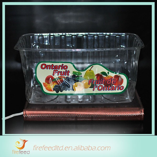 Cheap Wholesale Eco-friendly 2 layers plastic tray