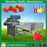 New designed fruit and vegetable processing machines vegetable fruit washing and drying machine