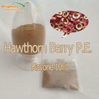 Top quality Hawthorn Berry P.E. 10%
