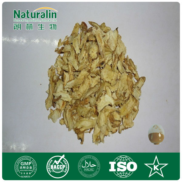Dried raw herbs/Angelica sinensis/Chinese angelica