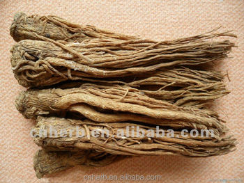 Dried Angelica root