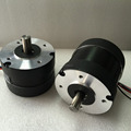 Dia.80mm 24v 12v dc motor 1 nm, burshless or brushed