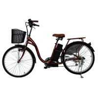 Low Price 24V High Speed Electronic Bicycle
