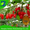 High quality wolfberry seed oil/goji berry oil