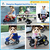 49CC kids petrol mini pocket bike/ 49cc Mini dirt bike for kids Petrol Motorcycle