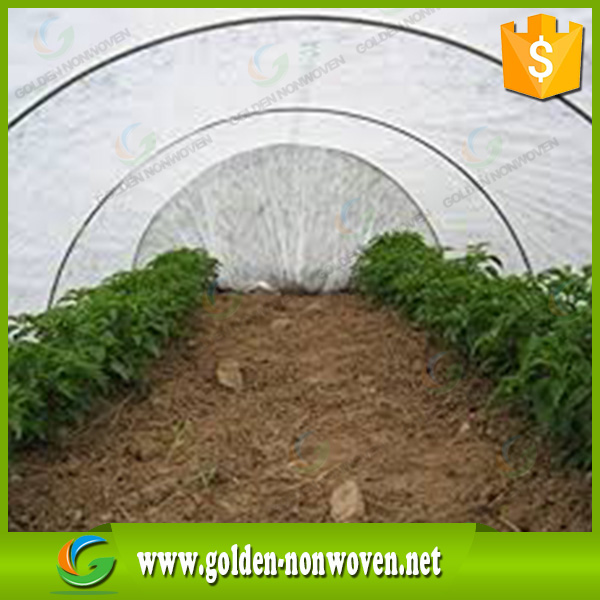 Pp spunbond non woven fabric for greenhouse covering,pp nonwoven sunshade screen