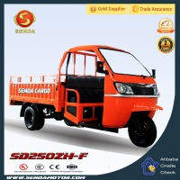 Closed Type Tricycle 200CC 250CC 300CC Trike Three Wheel Motorcycle Cargo With Cabin SD250ZH-F