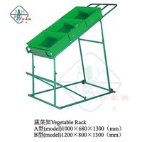 Shop supermarket store convinience grocery Vegetable fruit food display shelf rack