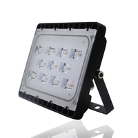 Hihg bright LED chip led flood light 30W ip65 120lm/w outdoor 30w Flood LED