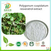 Resveratrol, Polygonum Cuspidatum Extract, Giant Knotweed Extract