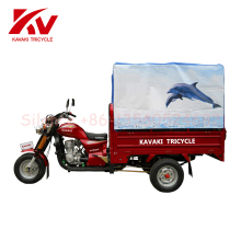 gasoline auto taxi passenger tricycle/rickshaw/three wheeler bajaj/tuk tuk for