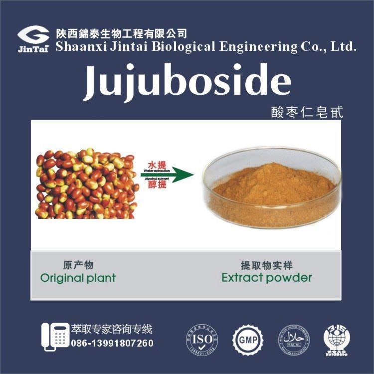 Natural Spine Date Seed P.E./Jujube Extract Jujubosides
