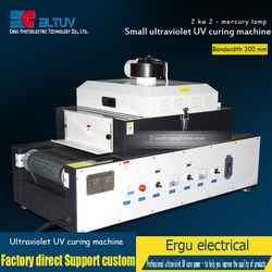 UV ultraviolet UV curing machine 300/2 lamp UV glue curing machine screen printing ink curing machine wholesale