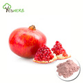 Hot sell pomegranate juice concentrate powder