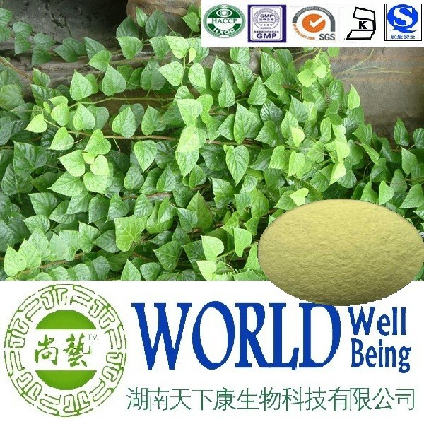Hot sales Cissus Quadrangularis extract/Glycosides 10%/Reduce oxidative factory supply