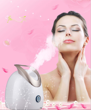 Beauty Equipment Nano Facial Ionic Steamer for Spa