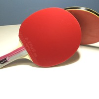 Star Series Professional Wood Ping Pong