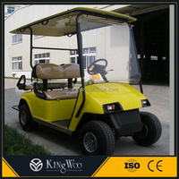 Electric golf cart two seater mini cars price