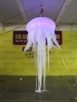 Fantasy attactive LED inflatable jellyfish