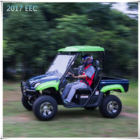 2017 Hot Selling Electric Dune Buggy
