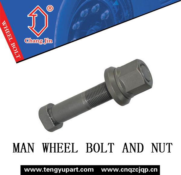 MAN Bolts and Nuts for Truck M22X1.5