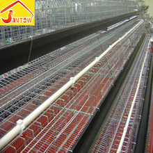 China layer egg chicken cage provide poultry farm house design large wire parrot and pigeon breeding cages