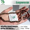 AGROK Salted Lugworm Made with living lugwrom coreano worm