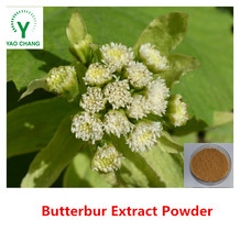 100% Natural Butterbur Extract Powder with high quality and best price
