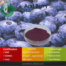 Acai Berry Extract/Acai Berry Brazil Export/Acai Berry