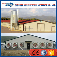 Steel prefab big poultry chicken house