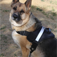 Reflective Padded Pet Soft No Pull Pet Harness Soft Dog Body Harness Dog Harness