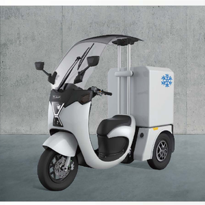 Chilwee new upgrade electric bike 3 wheel for adults