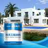 industrial building coating house coating popular building coating