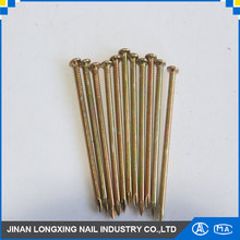 All length steel stainless steel concrete nails in china factory