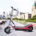 Foldable Electric Stand Up Scooter DR24300 with CE Certificate