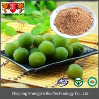 Bulk Low Price Hot sellng Dried Green Plum extract Powder,Green Plum Fruit Extract