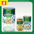 400G Canned Mushrooms Canned Champignon mushrooms whole